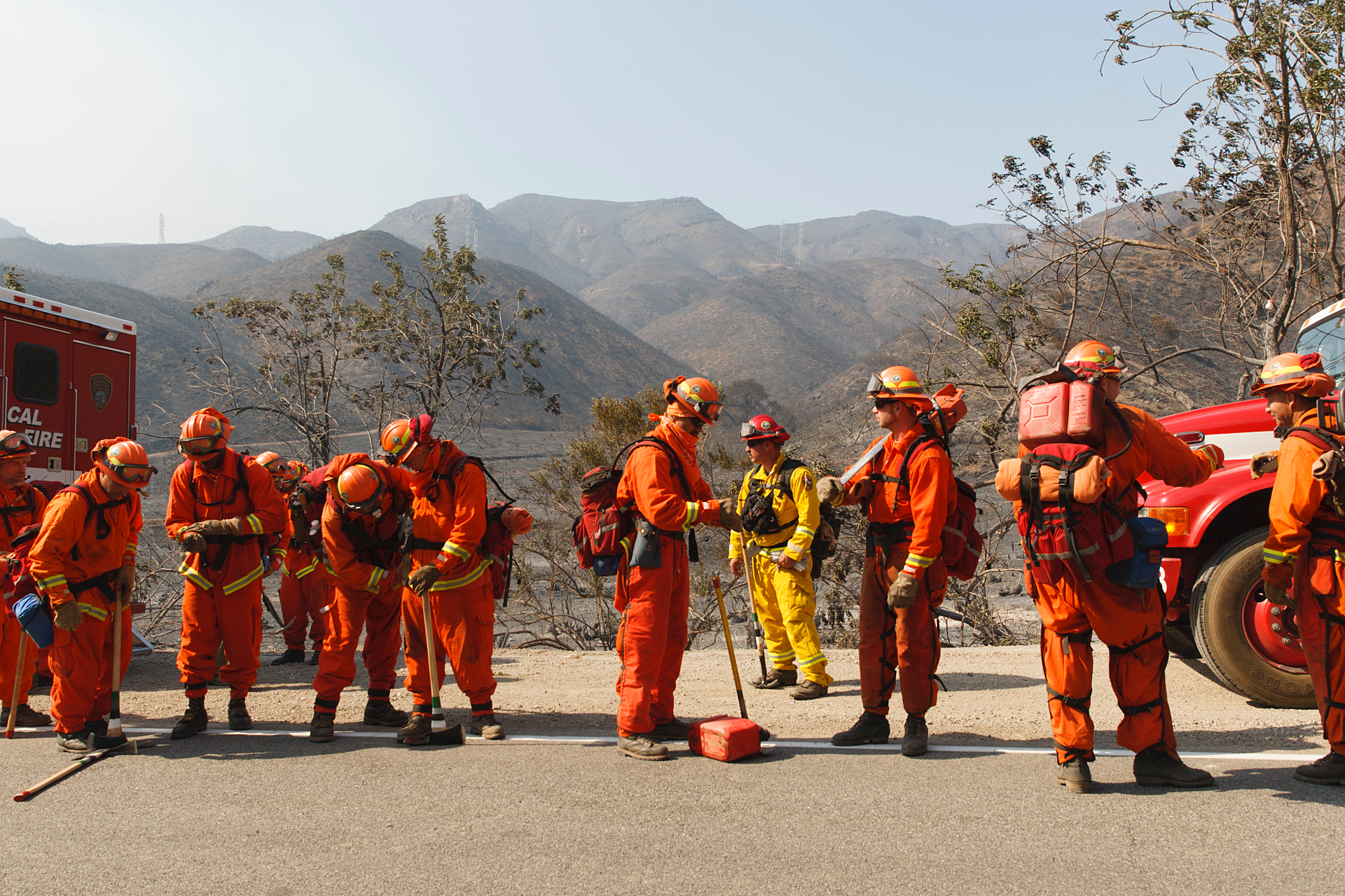 group of wildlands firefighters on road
